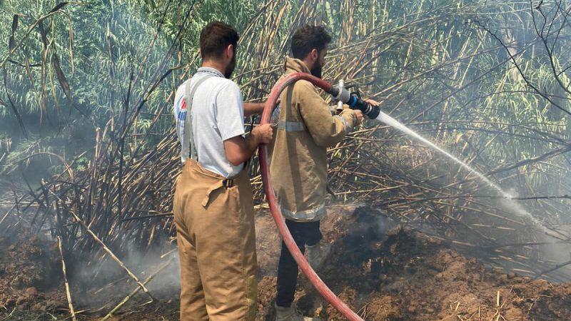 اخماد حريق اعشاب وقصب في بلدة الزرارية