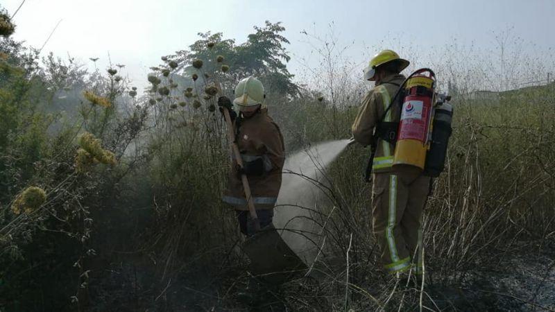 اخماد حريق اعشاب في بلدة طير دبا الجنوبية