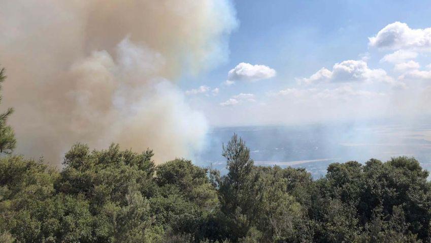 فرق الاطفاء تصل ليلها بنهارها لاخماد الحرائق التي اندلعت في عدد من البلدات الجنوبية