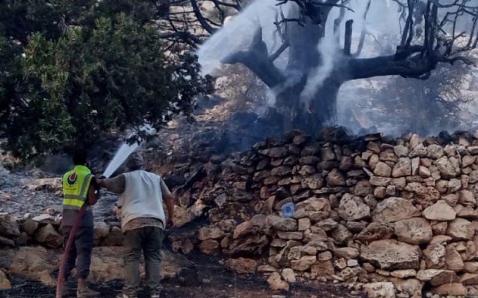 بالصور: عناصر من مركز رسم الحدث يخمدون عدداً من الحرائق في في بلدة حربتا ووادي فعرا